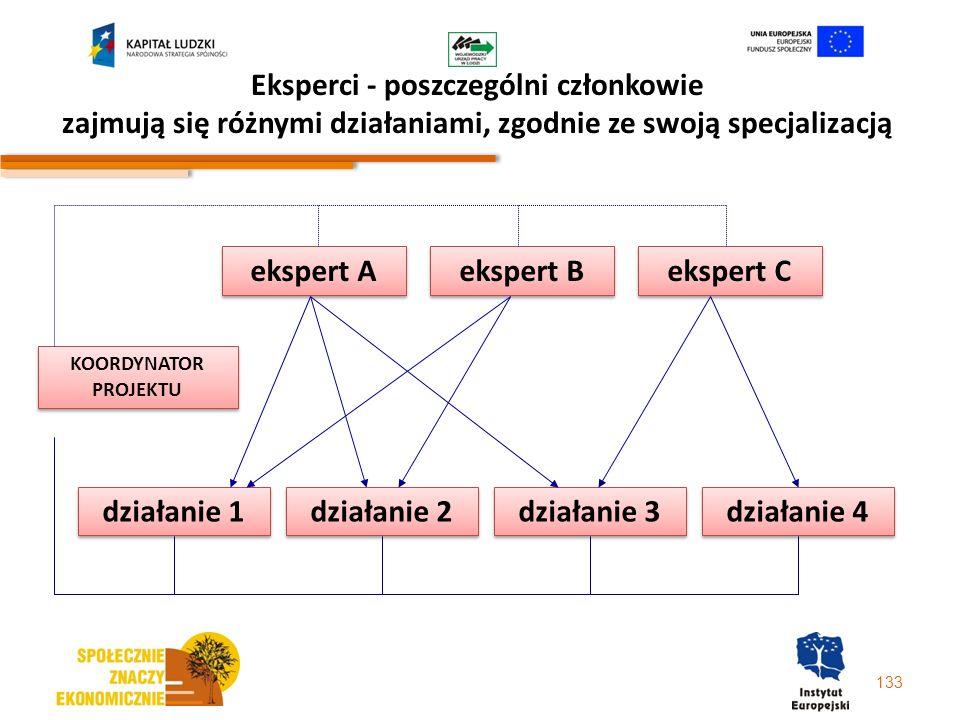 Eksperci - poszczególni członkowie zajmują się różnymi działaniami, zgodnie ze swoją specjalizacją 133 ekspert A ekspert B ekspert C działanie 2 dział