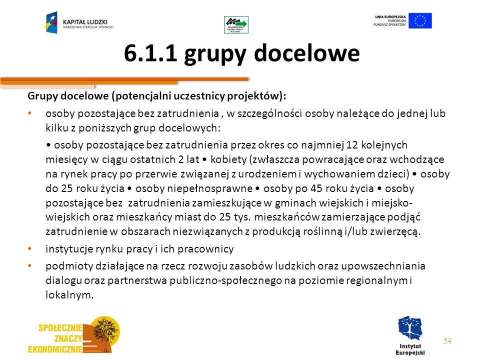 6.1.1 grupy docelowe Grupy docelowe (potencjalni uczestnicy projektów): osoby pozostające bez zatrudnienia, w szczególności osoby należące do jednej l