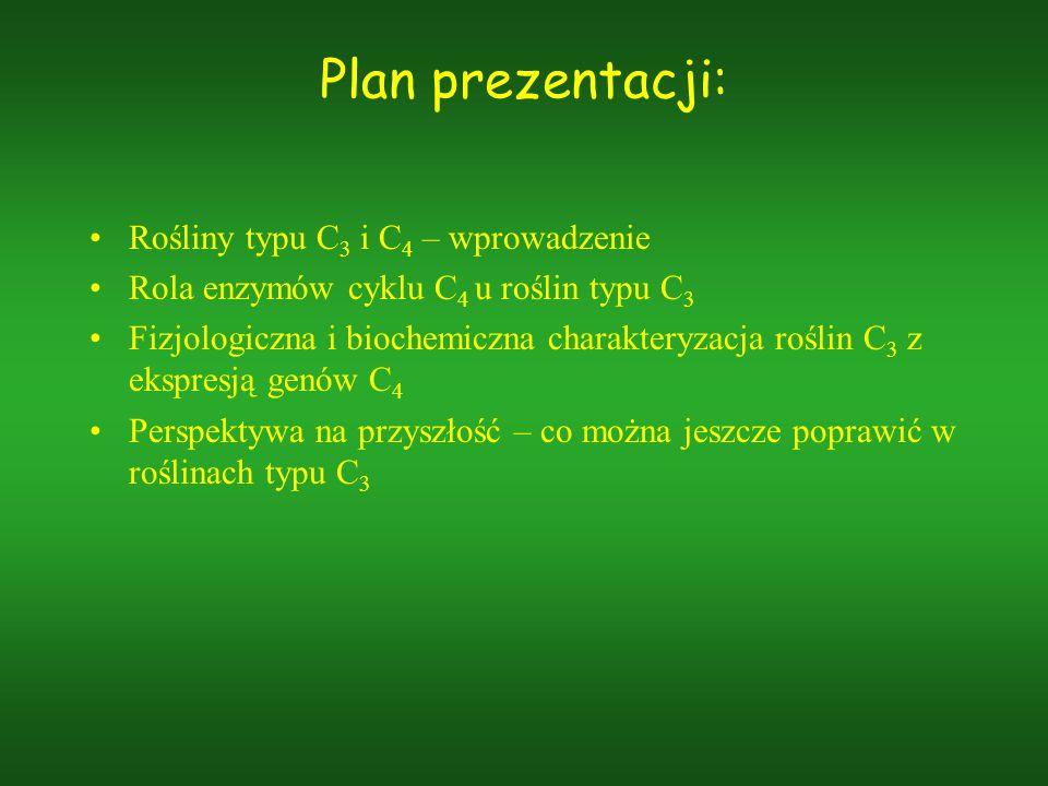 Plan prezentacji: Rośliny typu C 3 i C 4 – wprowadzenie Rola enzymów cyklu C 4 u roślin typu C 3 Fizjologiczna i biochemiczna charakteryzacja roślin C