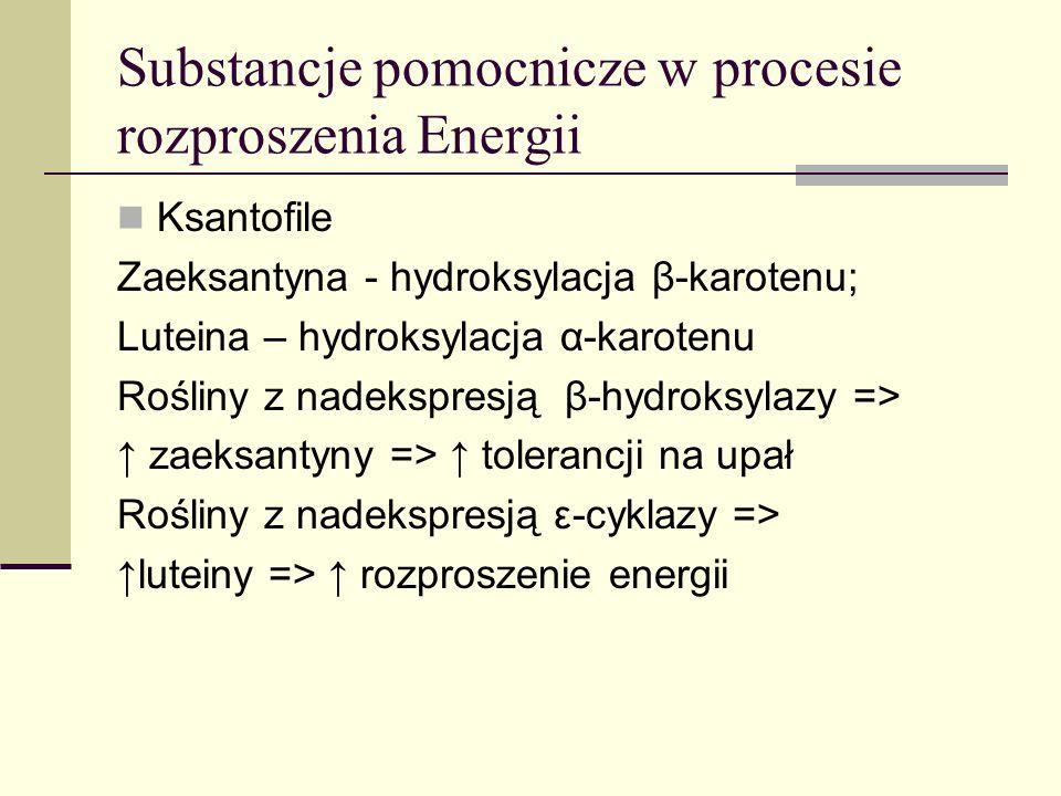 podział Węglowodorowe ( -karoten, likopen) utlenione - ksantofile (luteina, zeaksantyna) apokarotenoidy - poniżej 40 atomów węgla