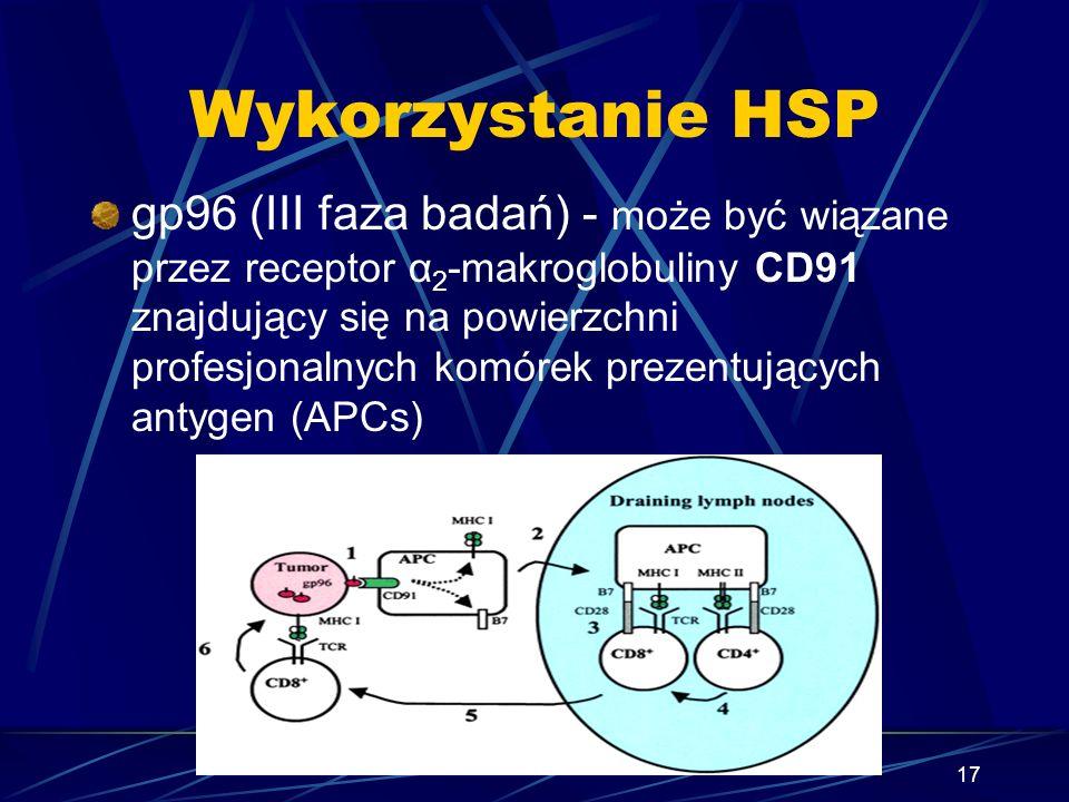 17 Wykorzystanie HSP gp96 (III faza badań) - może być wiązane przez receptor α 2 -makroglobuliny CD91 znajdujący się na powierzchni profesjonalnych ko