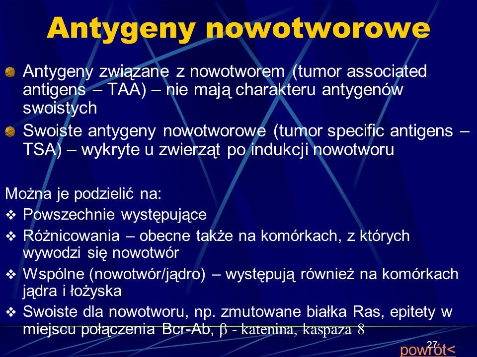 27 Antygeny nowotworowe Antygeny związane z nowotworem (tumor associated antigens – TAA) – nie mają charakteru antygenów swoistych Swoiste antygeny no