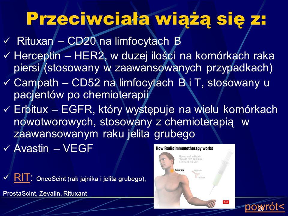 29 Przeciwciała wiążą się z: Rituxan – CD20 na limfocytach B Herceptin – HER2, w duzej ilości na komórkach raka piersi (stosowany w zaawansowanych prz
