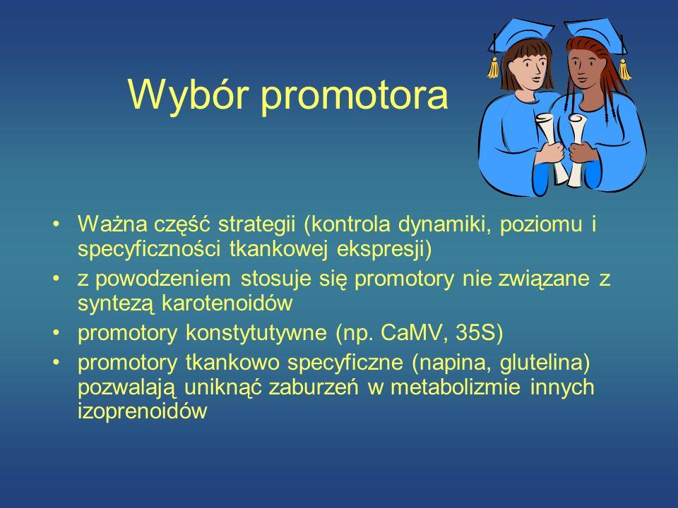 Wybór promotora Ważna część strategii (kontrola dynamiki, poziomu i specyficzności tkankowej ekspresji) z powodzeniem stosuje się promotory nie związa