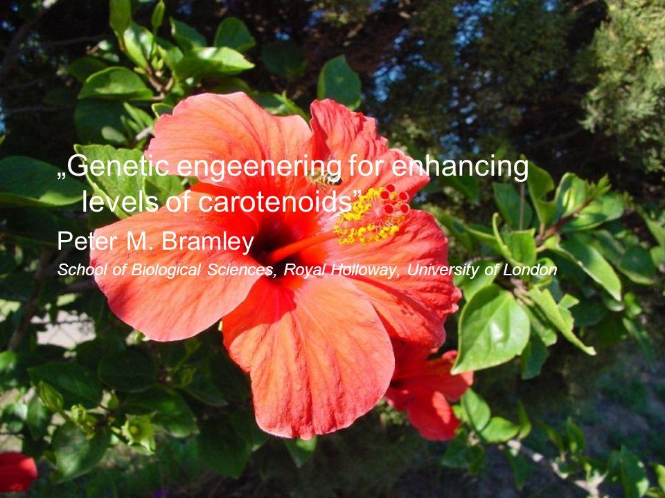 Genetic engeenering for enhancing levels of carotenoids Peter M. Bramley School of Biological Sciences, Royal Holloway, University of London