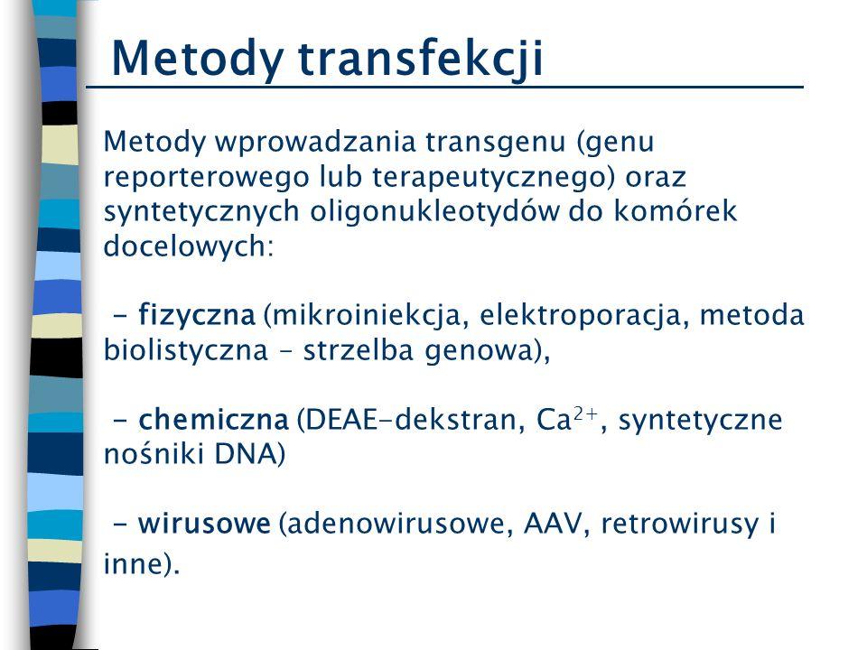 Metody wprowadzania transgenu (genu reporterowego lub terapeutycznego) oraz syntetycznych oligonukleotydów do komórek docelowych: - fizyczna (mikroini