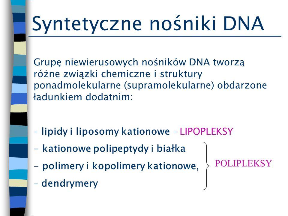 Bariera pozakomórkowa Próby zwiększenia stabilności kompleksów nośnika z DNA w krwiobiegu: -utworzenie na zewnętrznej powłoce nośników niewirusowych warstwy hydrofilowej z kopolimerów np.