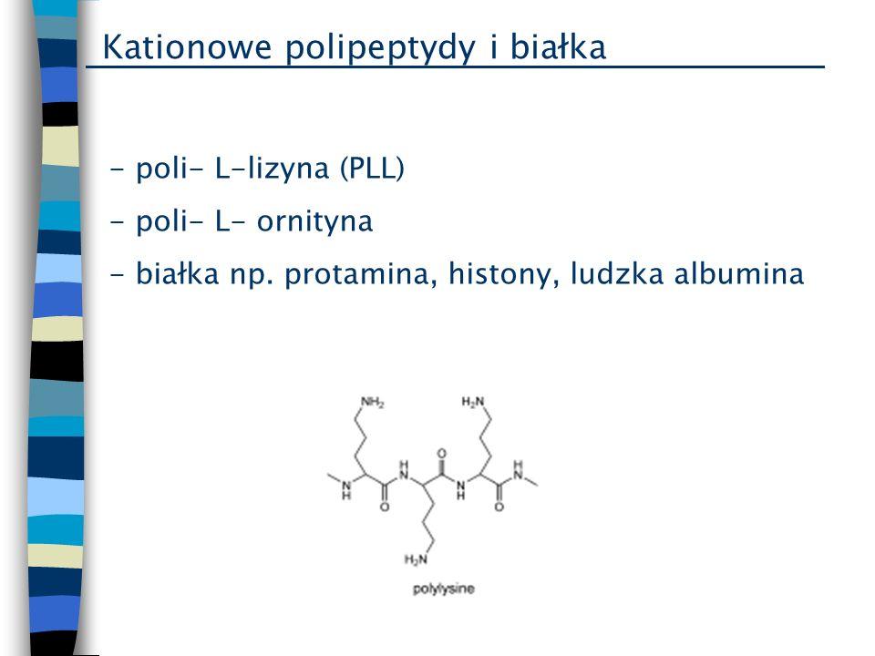 Kationowe polipeptydy i białka - poli- L-lizyna (PLL) - poli- L- ornityna - białka np. protamina, histony, ludzka albumina