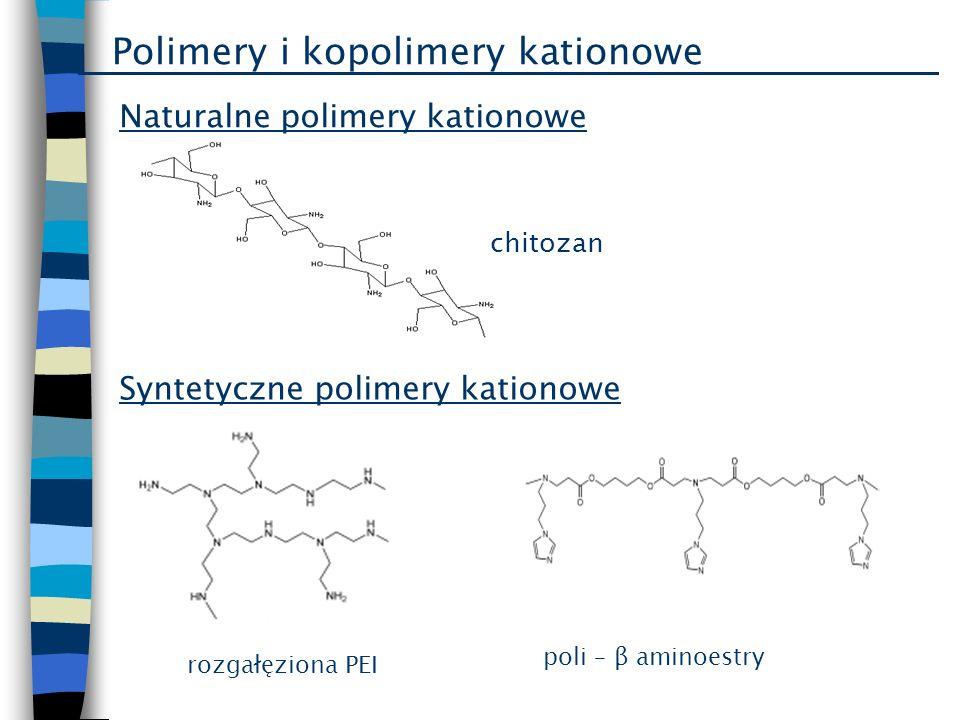Polimery i kopolimery kationowe Syntetyczne polimery kationowe Naturalne polimery kationowe chitozan rozgałęziona PEI poli – β aminoestry