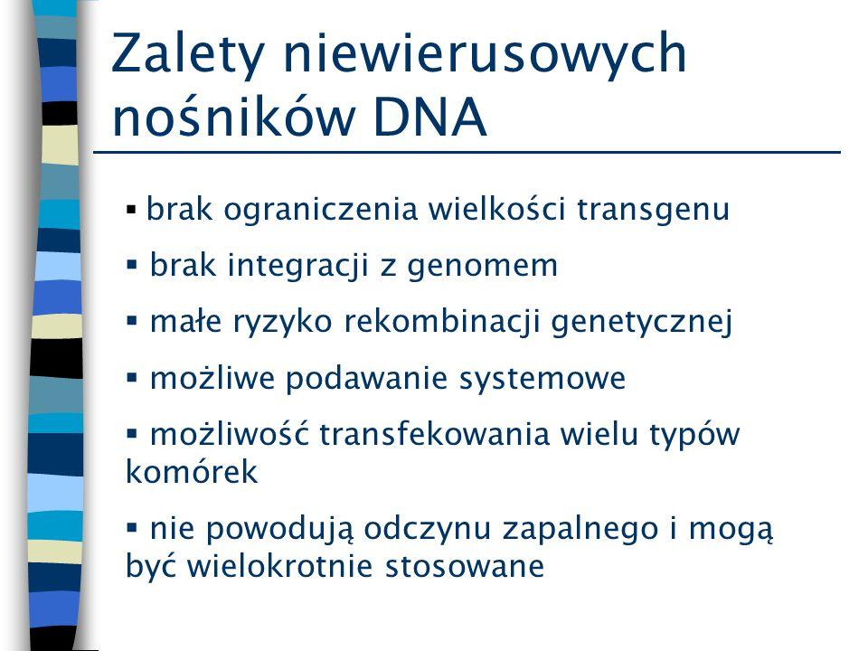 Zalety niewierusowych nośników DNA brak ograniczenia wielkości transgenu brak integracji z genomem małe ryzyko rekombinacji genetycznej możliwe podawa