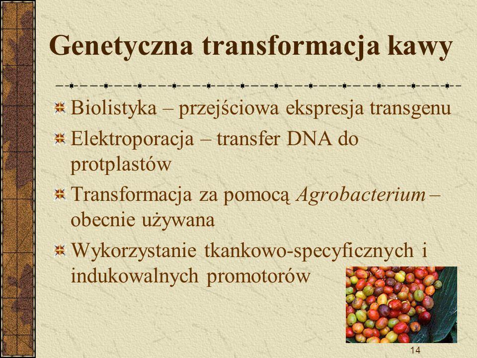 14 Genetyczna transformacja kawy Biolistyka – przejściowa ekspresja transgenu Elektroporacja – transfer DNA do protplastów Transformacja za pomocą Agr