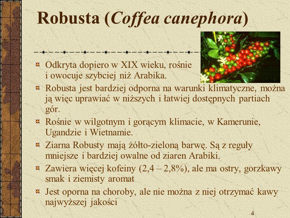 4 Robusta (Coffea canephora) Odkryta dopiero w XIX wieku, rośnie i owocuje szybciej niż Arabika. Robusta jest bardziej odporna na warunki klimatyczne,