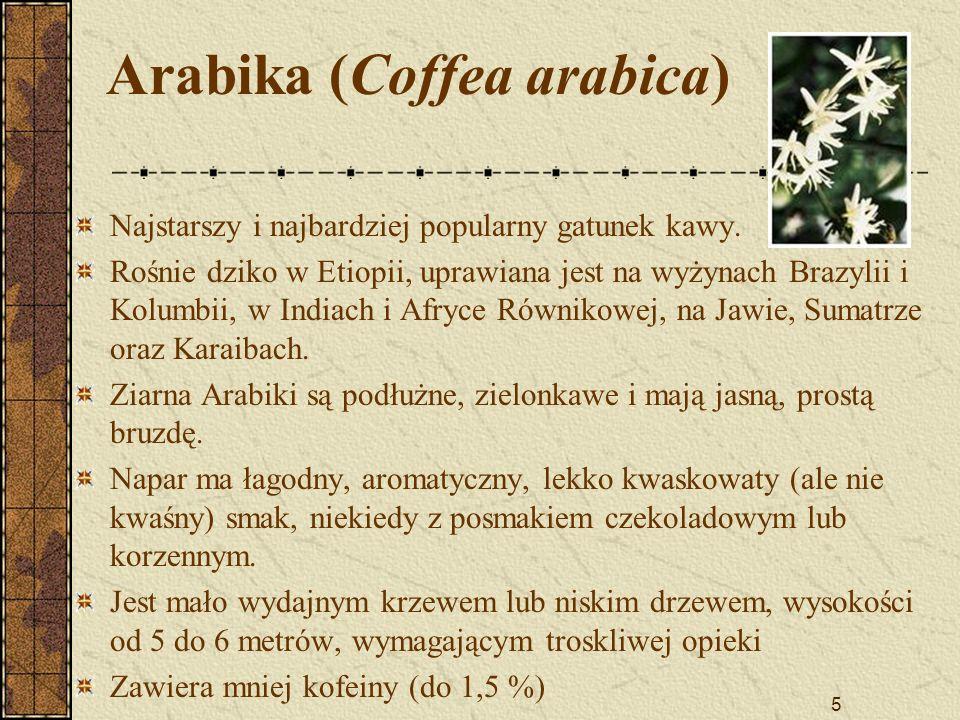 5 Arabika (Coffea arabica) Najstarszy i najbardziej popularny gatunek kawy. Rośnie dziko w Etiopii, uprawiana jest na wyżynach Brazylii i Kolumbii, w