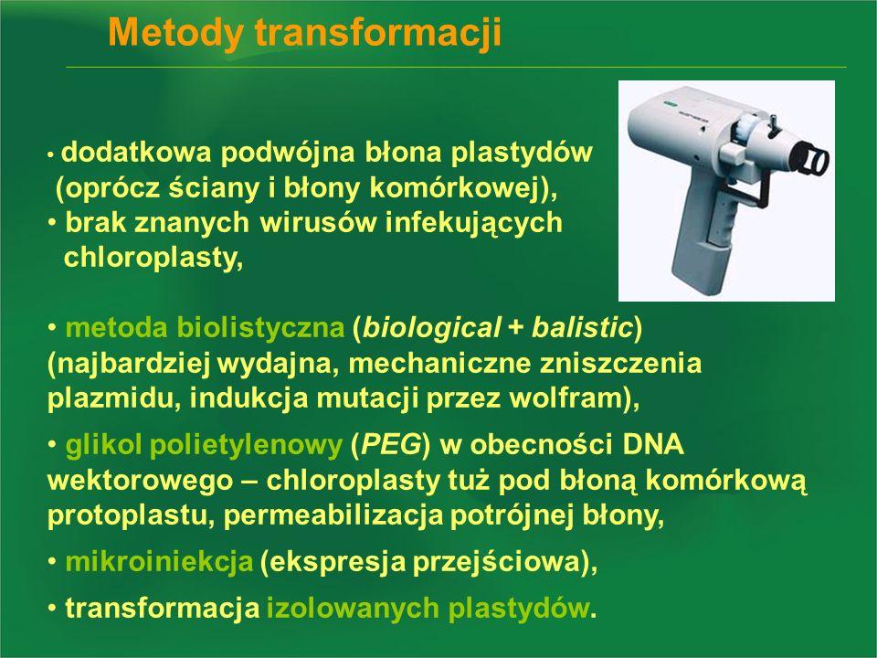 Metody transformacji dodatkowa podwójna błona plastydów (oprócz ściany i błony komórkowej), brak znanych wirusów infekujących chloroplasty, metoda bio