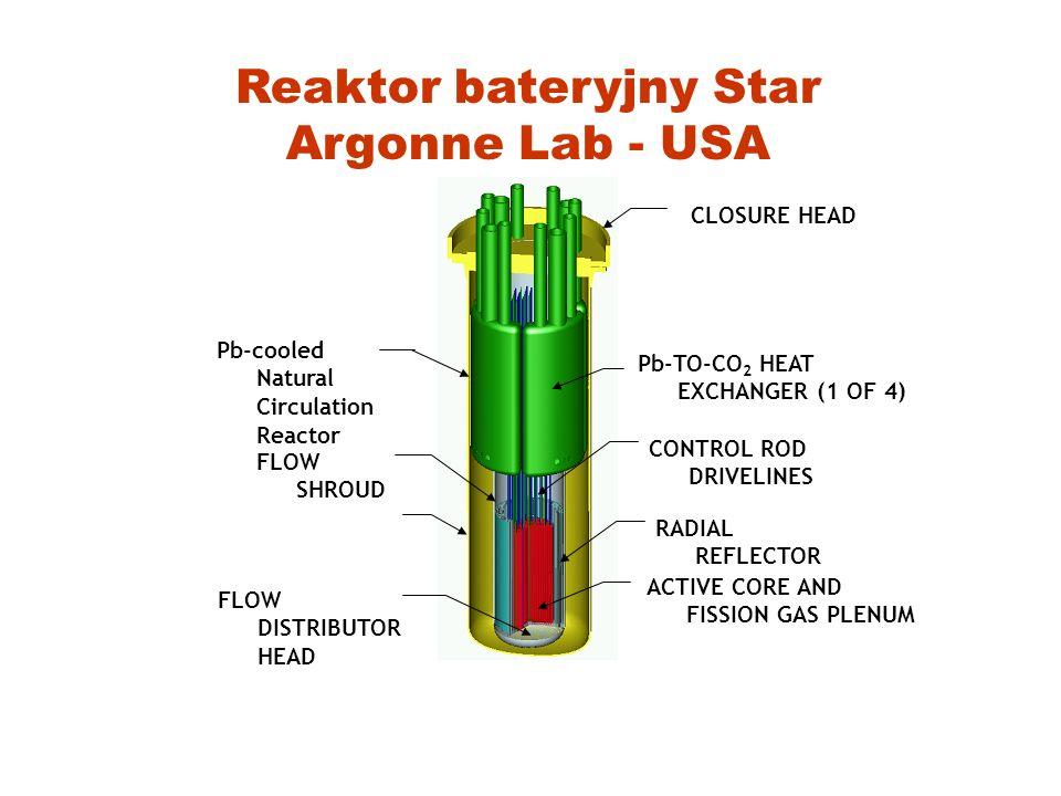 Jakie są oferty ? Reaktor bateryjny bez wymiany paliwa(20-30 lat pracy) Międzynarodowe centra przerobu paliwa - GNEP Gwarancja odbioru i dostawy śwież