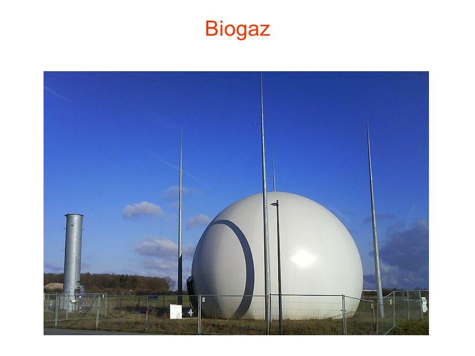 BIOGAZ i BIOENERGIA Uprawy celowe Odpady rolno- przemysłowe Fermentacja Biogaz Energia cieplna Energia elektryczna
