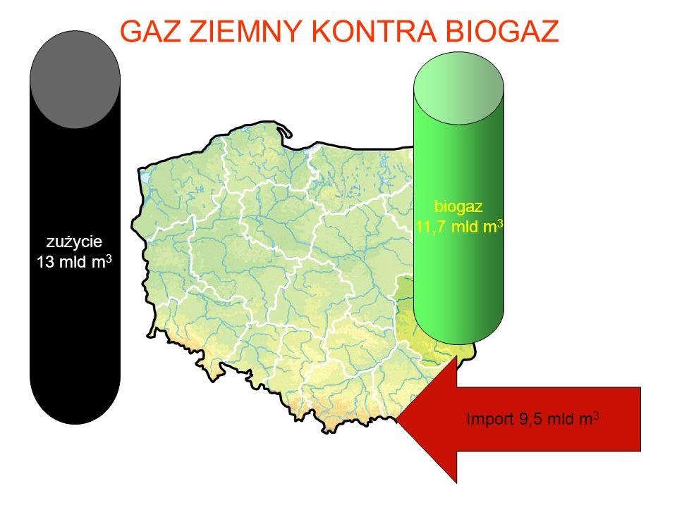 Wydajność biogazu m 3 CH 4 / ha
