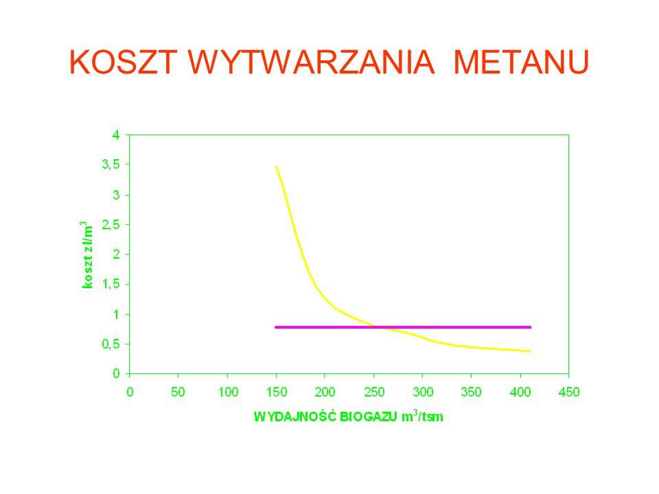 GAZ ZIEMNY KONTRA BIOGAZ zużycie 13 mld m 3 biogaz 11,7 mld m 3 Import 9,5 mld m 3