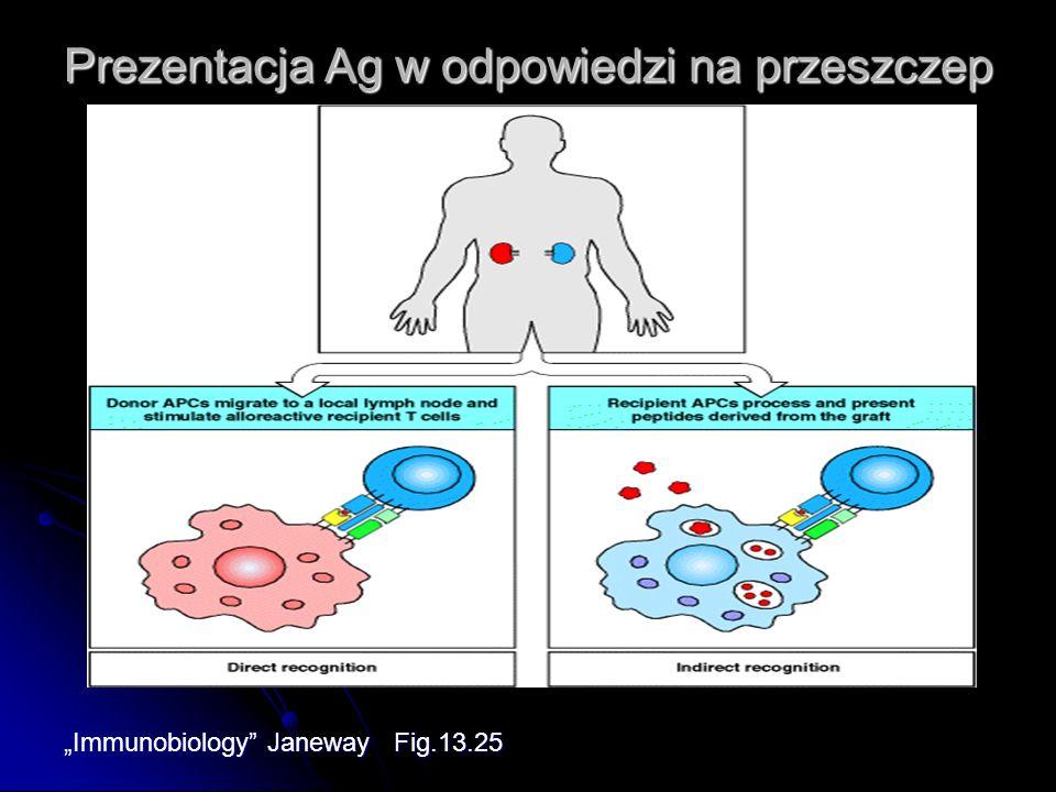 Prezentacja Ag w odpowiedzi na przeszczep Immunobiology Janeway Fig.13.25
