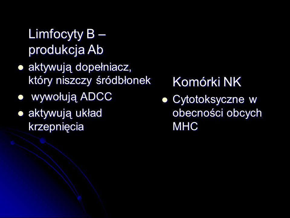 Limfocyty B – produkcja Ab Limfocyty B – produkcja Ab aktywują dopełniacz, który niszczy śródbłonek aktywują dopełniacz, który niszczy śródbłonek wywo
