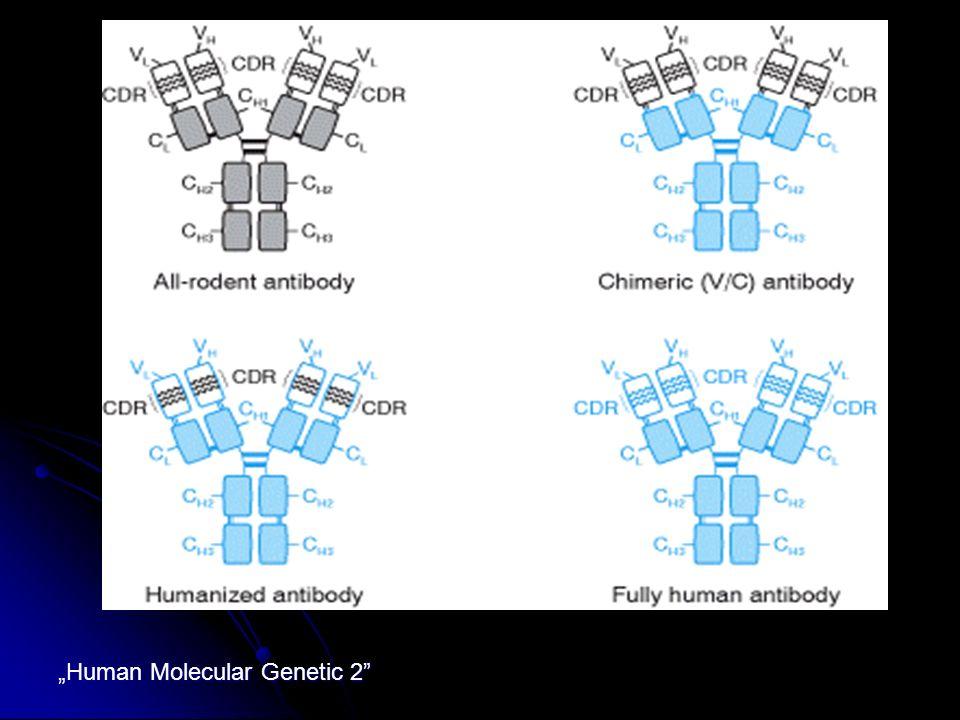 Human Molecular Genetic 2