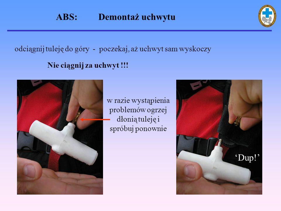 ABS: Ewidencja SFISAR (Swiss Federal Institute for Snow and Avalanche Research) w Davos prowadzi centralną rejestrację wypadków lawinowych Po wypełnieniu i przesłaniu do SFISAR kwestionariusza dotyczącego zdarzenia lawinowego klient ma zapewnione darmowe napełnienie butelki i uchwytu, zaoszczędzając 38 euro Od II.1991 do IV.2006 zarejestrowano 100 wypadków lawinowych z plecakami z systemem ABS: 53 nie zasypanych 42 częściowo zasypanych 11 całkowicie zasypanych przeżyło 105 osób (99,5%) zginęła 1 osoba (0,95%)