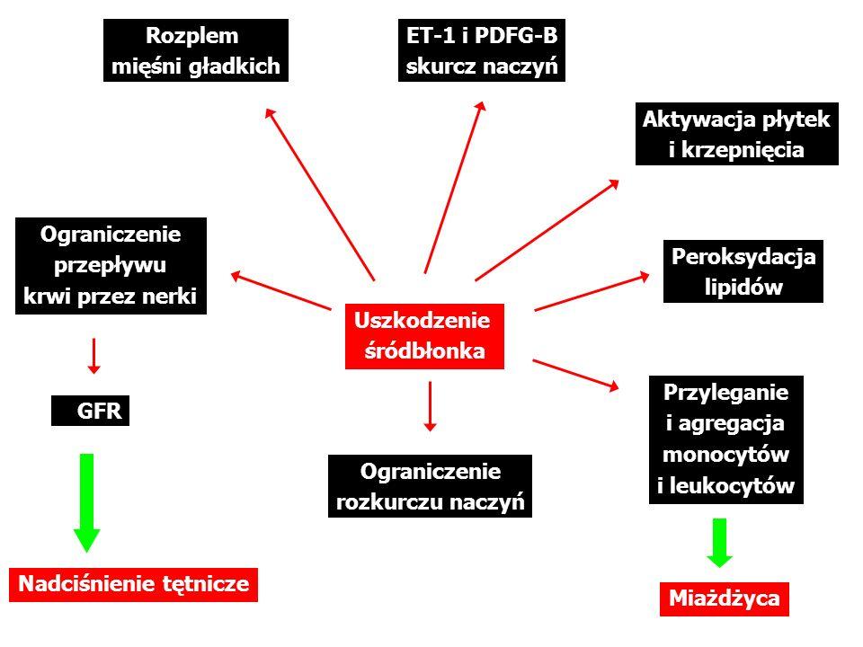 Uszkodzenie naczyń, włóknienie Na + reabsorpcja Retencja wody Włóknienie i remodeling mięśnia serca Dysfunkcja śródbłonka ALDOSTERON ( nadnercza, CUN, serce, naczynia ) Efekt prozakrzepowy (PAI-1) Arytmie komorowe Progresja niewydolności nerek Zmienność rytmu serca Podatność naczyń NADCIŚNIENIE NIEWYDOLNOŚĆ SERCA UDARNIEDOKRWIENIE