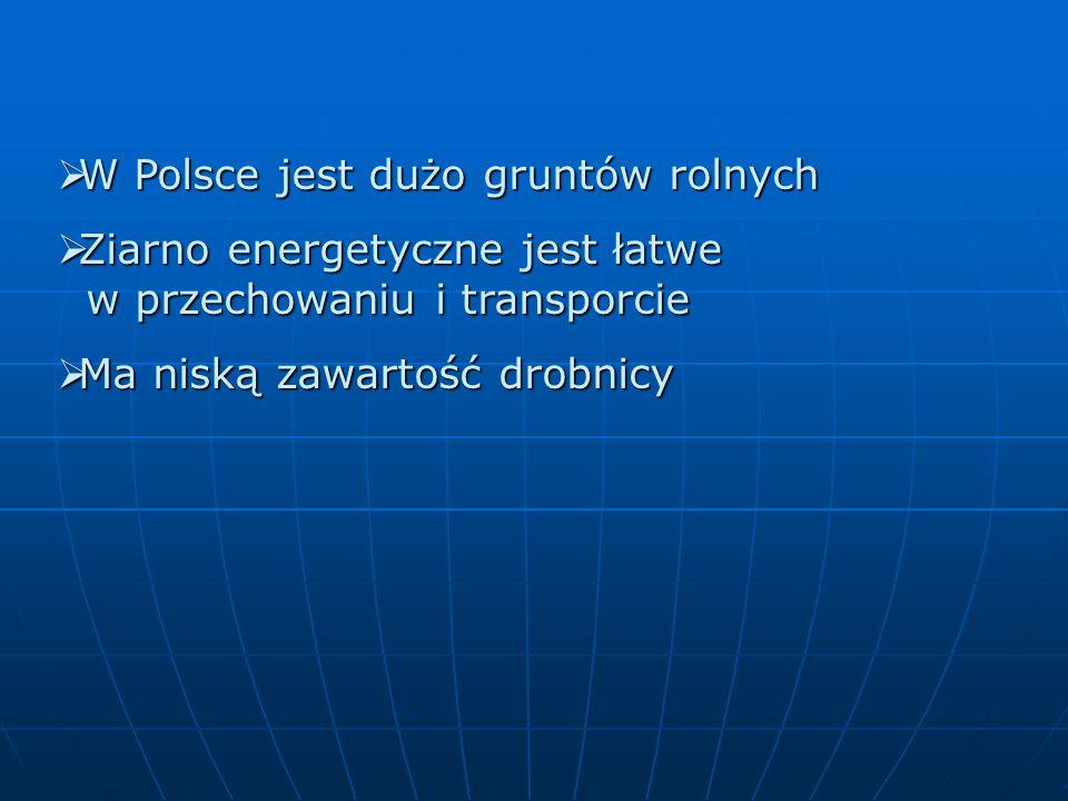 W Polsce jest dużo gruntów rolnych W Polsce jest dużo gruntów rolnych Ziarno energetyczne jest łatwe w przechowaniu i transporcie Ziarno energetyczne