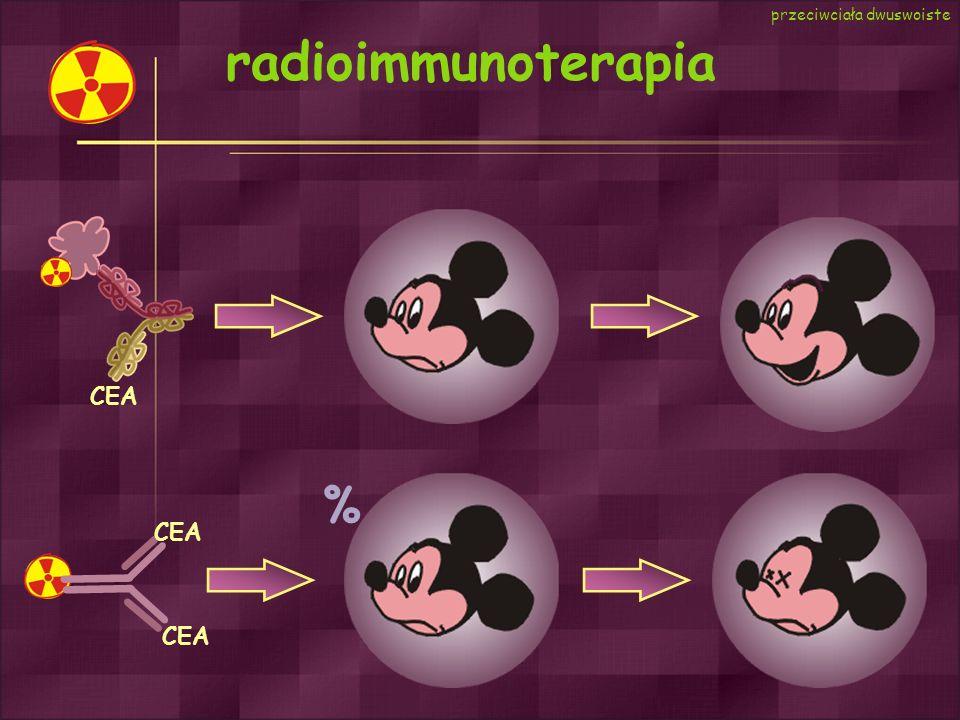 radioimmunoterapia % przeciwciała dwuswoiste CEA