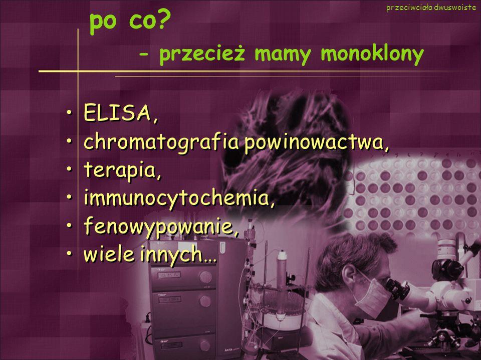 po co? - przecież mamy monoklony przeciwciała dwuswoiste ELISA, chromatografia powinowactwa, terapia, immunocytochemia, fenowypowanie, wiele innych… E