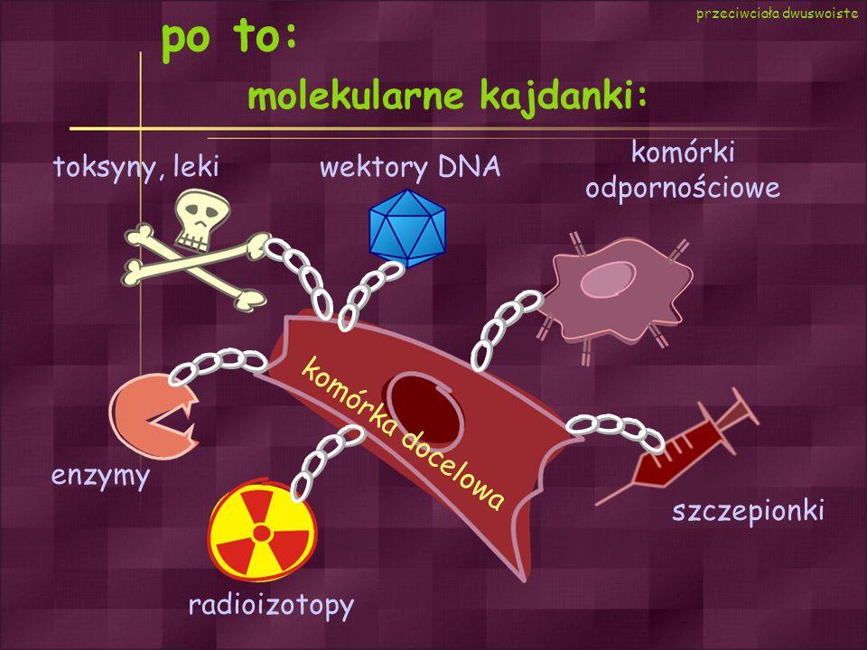 po to: molekularne kajdanki: toksyny, leki enzymy radioizotopy szczepionki komórki odpornościowe wektory DNA komórka docelowa przeciwciała dwuswoiste