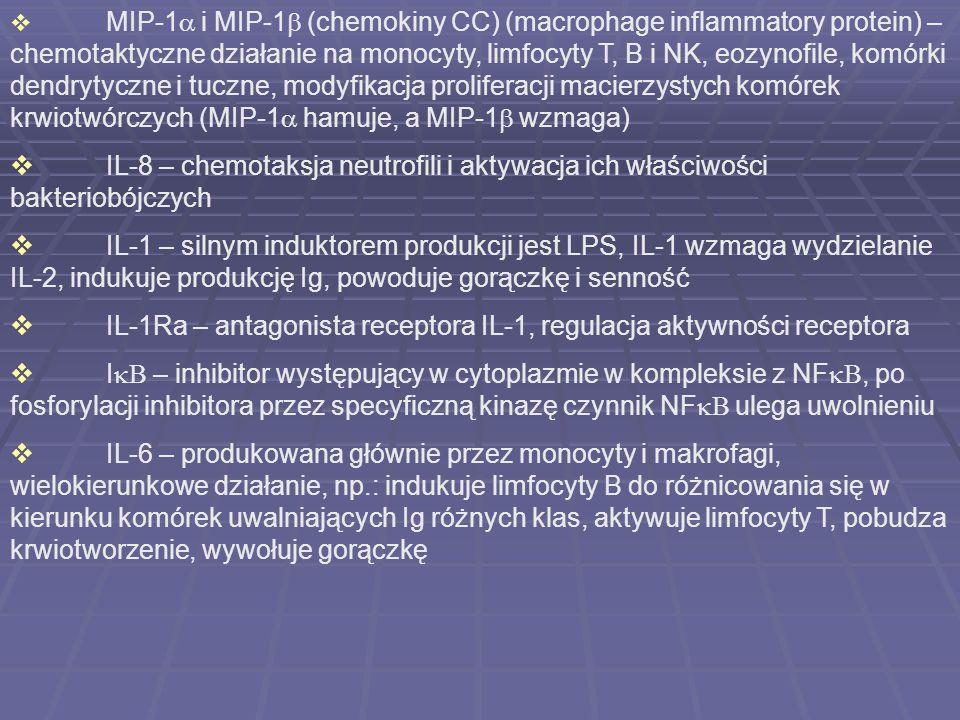 MIP-1 i MIP-1 (chemokiny CC) (macrophage inflammatory protein) – chemotaktyczne działanie na monocyty, limfocyty T, B i NK, eozynofile, komórki dendry
