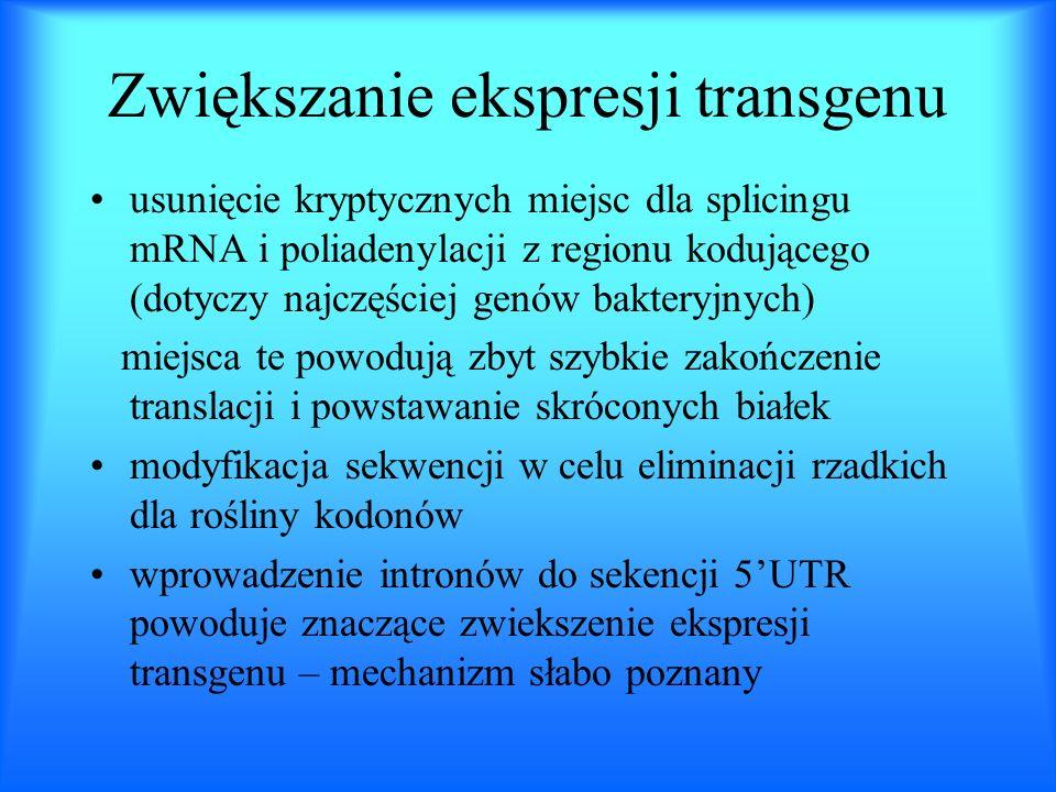 Zwiększanie ekspresji transgenu usunięcie kryptycznych miejsc dla splicingu mRNA i poliadenylacji z regionu kodującego (dotyczy najczęściej genów bakt