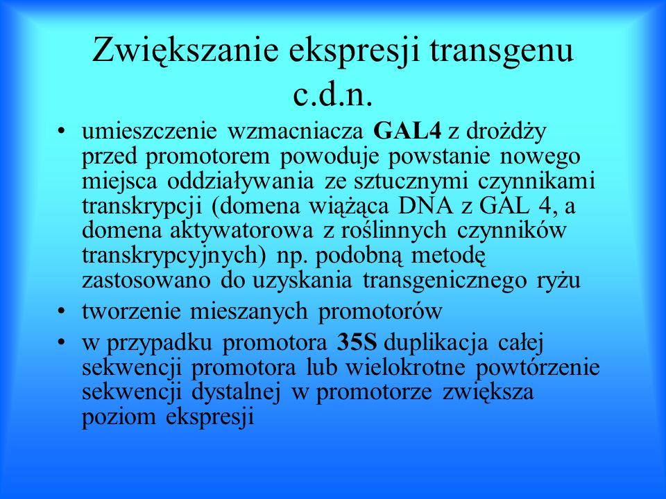 Zwiększanie ekspresji transgenu c.d.n. umieszczenie wzmacniacza GAL4 z drożdży przed promotorem powoduje powstanie nowego miejsca oddziaływania ze szt