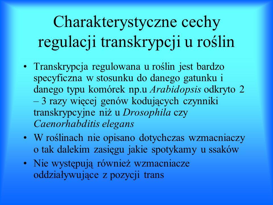Charakterystyczne cechy regulacji transkrypcji u roślin Transkrypcja regulowana u roślin jest bardzo specyficzna w stosunku do danego gatunku i danego