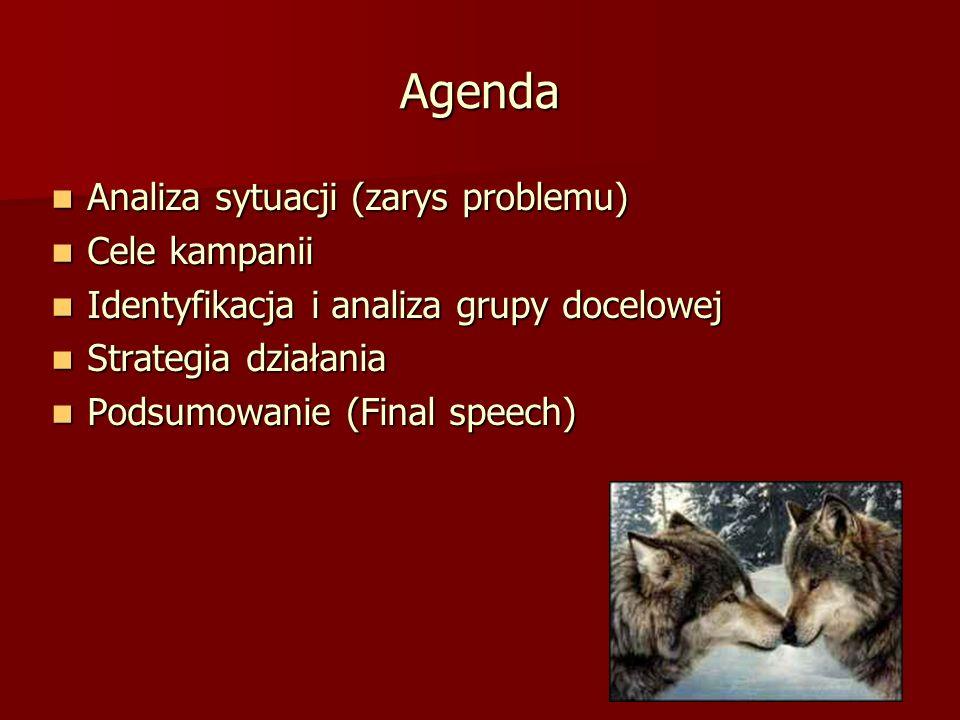 Agenda Analiza sytuacji (zarys problemu) Analiza sytuacji (zarys problemu) Cele kampanii Cele kampanii Identyfikacja i analiza grupy docelowej Identyf