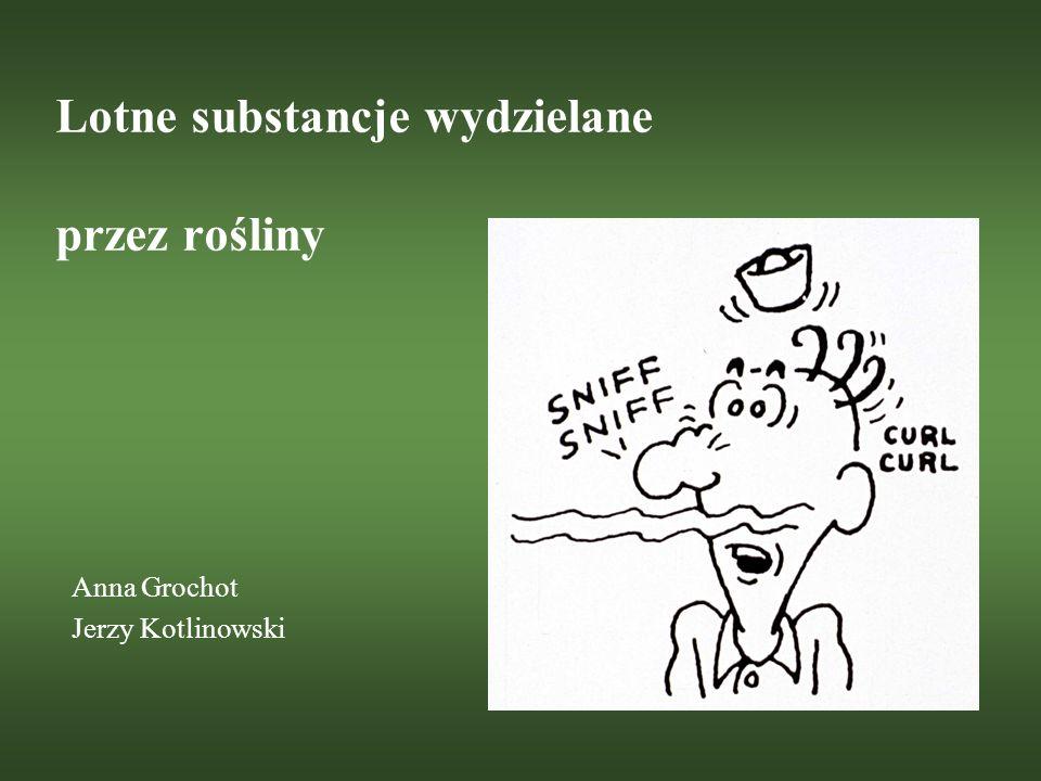 Lotne substancje wydzielane przez rośliny Anna Grochot Jerzy Kotlinowski
