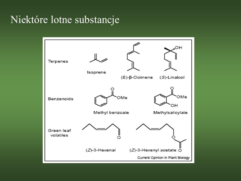 Części wegetatywne (1) Związkiem zapachowym najczęściej wydzielanym z części wegetatywnych jest izopren (szczególnie u drzew); chroni aparat fotostyntetyczny czerwonego dębu i kudzu gdy jest cieplej niż 40° C (stabilizacja błon tylakoidu lub wyłapywanie reaktywnych form tlenu) S – metylometionina chroni orzecha brazylijskiego przed chrząszczami Salicylan metylu wydzielany przez młode liście Leonardoxa africana; zwabia dzielne mrówki Petalomyrmex, które patrolują liście, poszukując groźnych dla rośliny insektów
