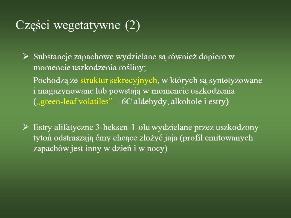 Części wegetatywne (2) Substancje zapachowe wydzielane są również dopiero w momencie uszkodzenia rośliny; Pochodzą ze struktur sekrecyjnych, w których