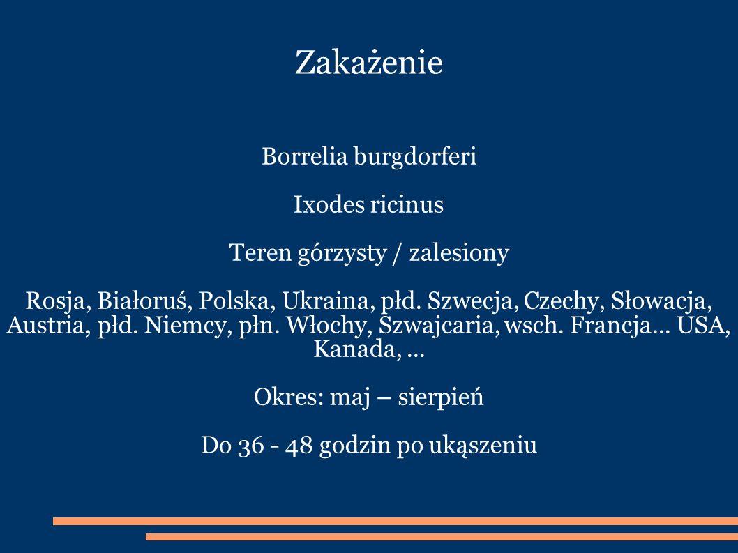 Zakażenie Borrelia burgdorferi Ixodes ricinus Teren górzysty / zalesiony Rosja, Białoruś, Polska, Ukraina, płd.