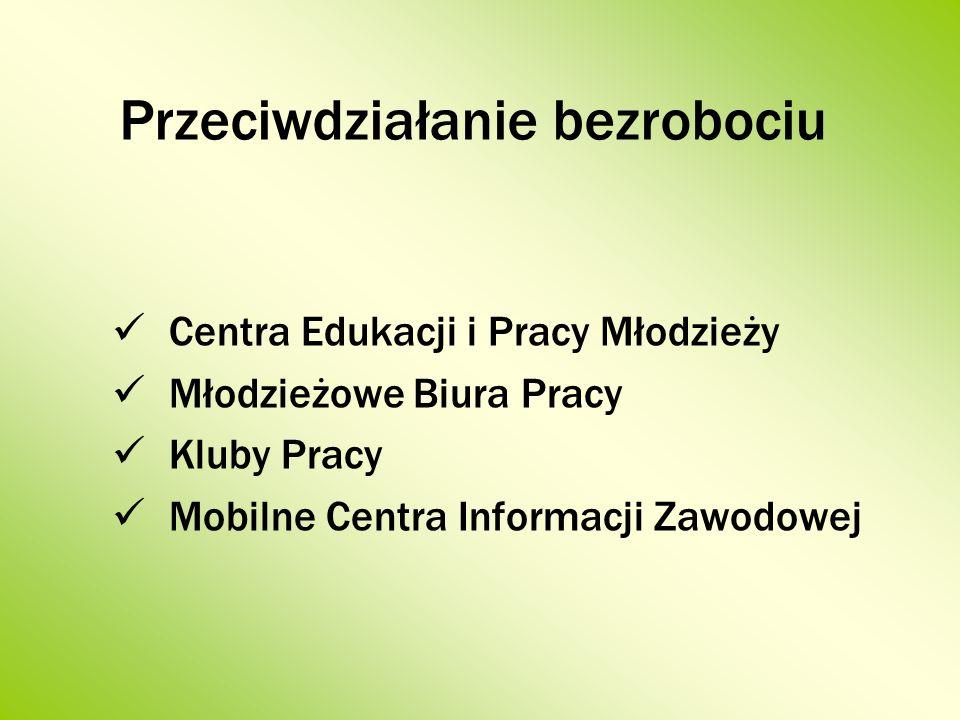 Przeciwdziałanie bezrobociu Centra Edukacji i Pracy Młodzieży Młodzieżowe Biura Pracy Kluby Pracy Mobilne Centra Informacji Zawodowej