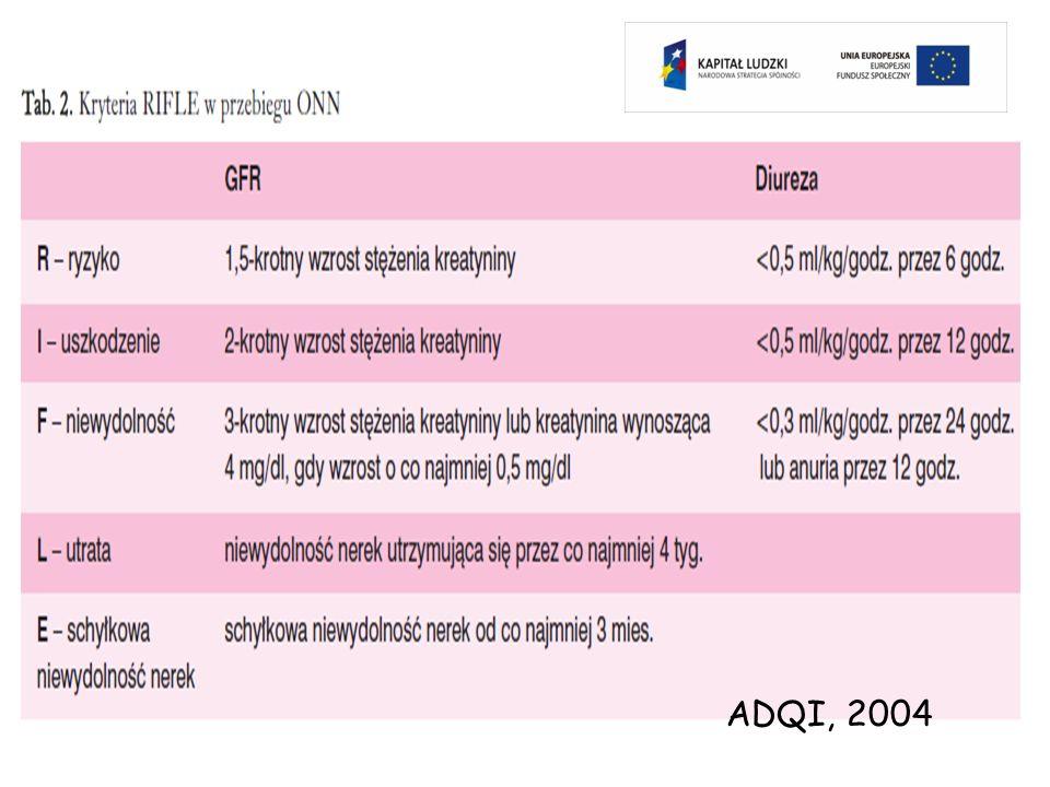 ADQI, 2004
