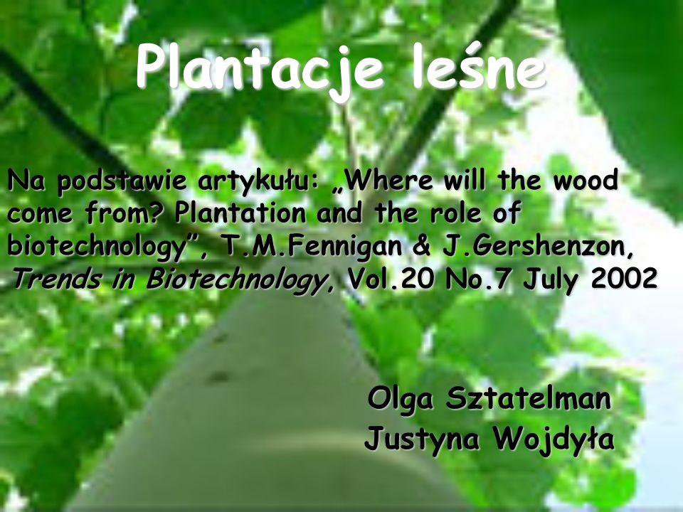Cechami modyfikowanymi są: i)odporność na wirusy i owady, ii)tolerancja herbicydów, iii) jakość drewna, np.