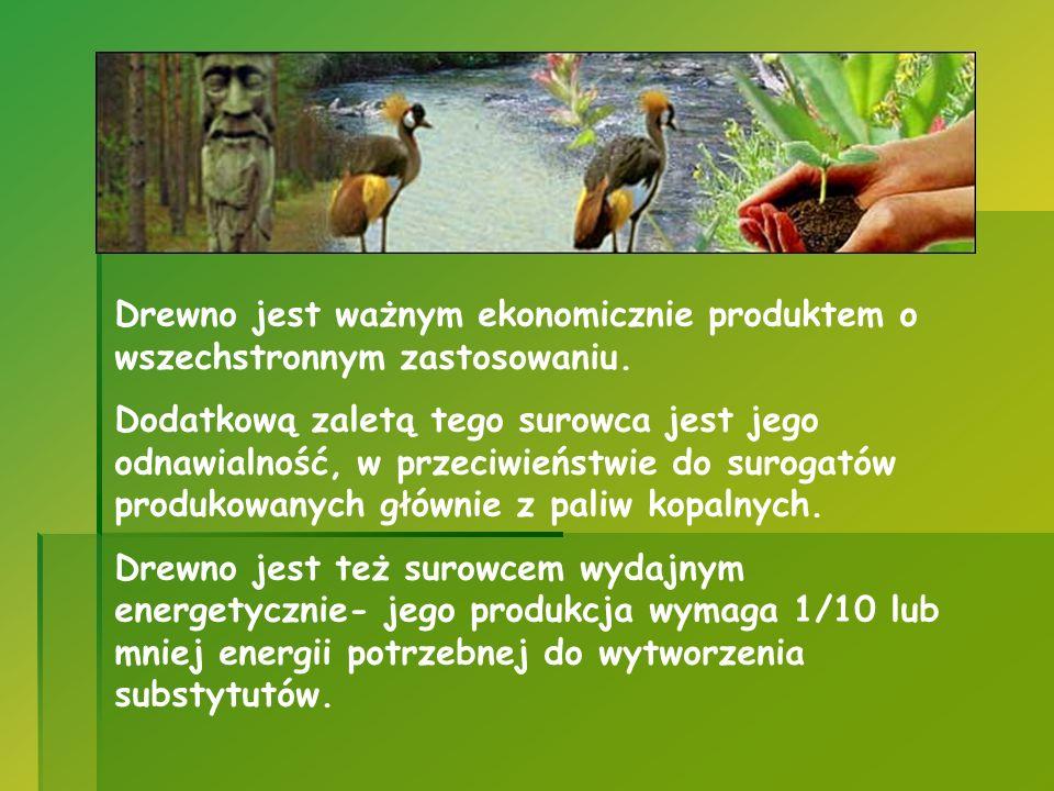 Drewno jest ważnym ekonomicznie produktem o wszechstronnym zastosowaniu. Dodatkową zaletą tego surowca jest jego odnawialność, w przeciwieństwie do su