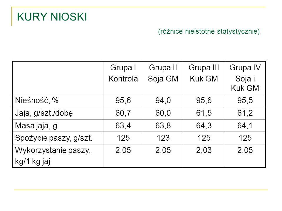 KURY NIOSKI (różnice nieistotne statystycznie) Grupa I Kontrola Grupa II Soja GM Grupa III Kuk GM Grupa IV Soja i Kuk GM Nieśność, %95,694,095,695,5 J