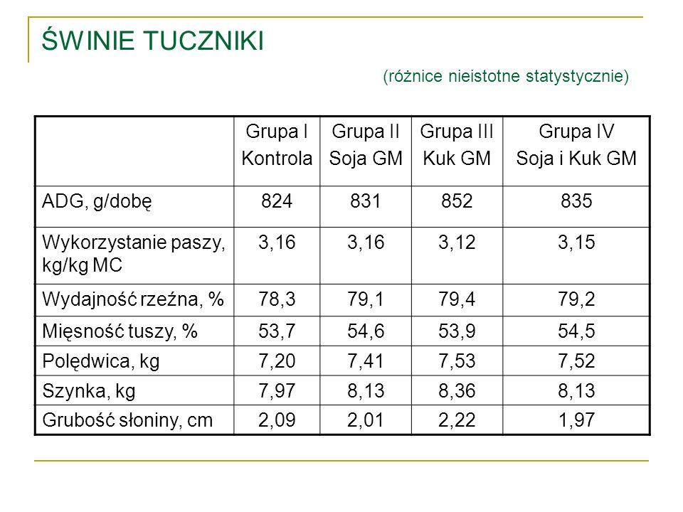 ŚWINIE TUCZNIKI (różnice nieistotne statystycznie) Grupa I Kontrola Grupa II Soja GM Grupa III Kuk GM Grupa IV Soja i Kuk GM ADG, g/dobę824831852835 W