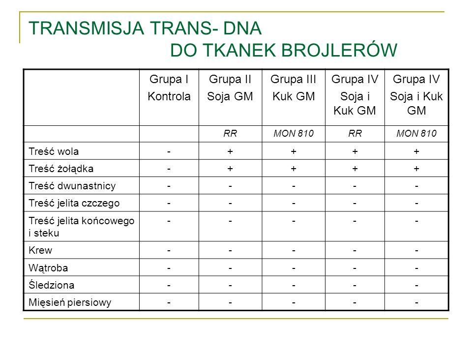 TRANSMISJA TRANS- DNA DO TKANEK BROJLERÓW Grupa I Kontrola Grupa II Soja GM Grupa III Kuk GM Grupa IV Soja i Kuk GM Grupa IV Soja i Kuk GM RRMON 810RR