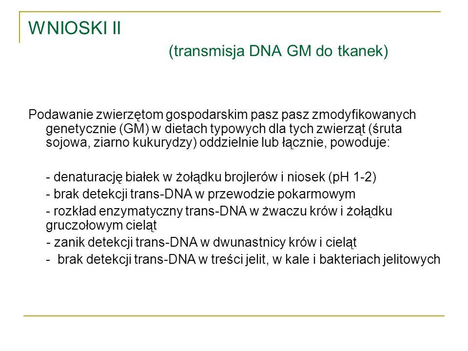 WNIOSKI II (transmisja DNA GM do tkanek) Podawanie zwierzętom gospodarskim pasz pasz zmodyfikowanych genetycznie (GM) w dietach typowych dla tych zwie