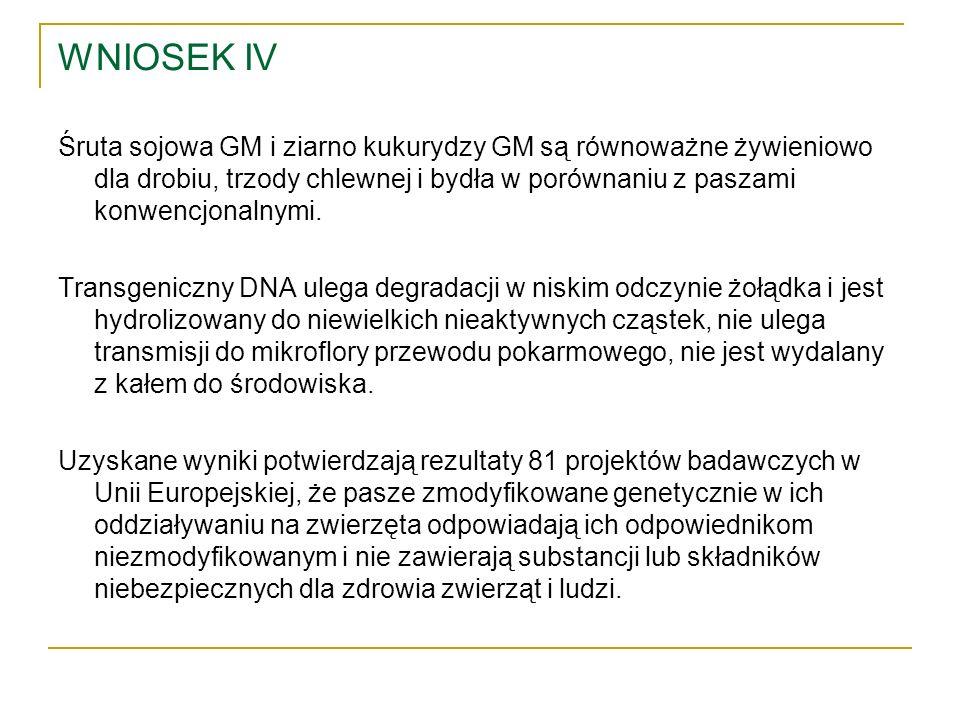 WNIOSEK IV Śruta sojowa GM i ziarno kukurydzy GM są równoważne żywieniowo dla drobiu, trzody chlewnej i bydła w porównaniu z paszami konwencjonalnymi.