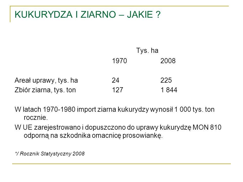 KUKURYDZA I ZIARNO – JAKIE ? Tys. ha 19702008 Areał uprawy, tys. ha24225 Zbiór ziarna, tys. ton1271 844 W latach 1970-1980 import ziarna kukurydzy wyn
